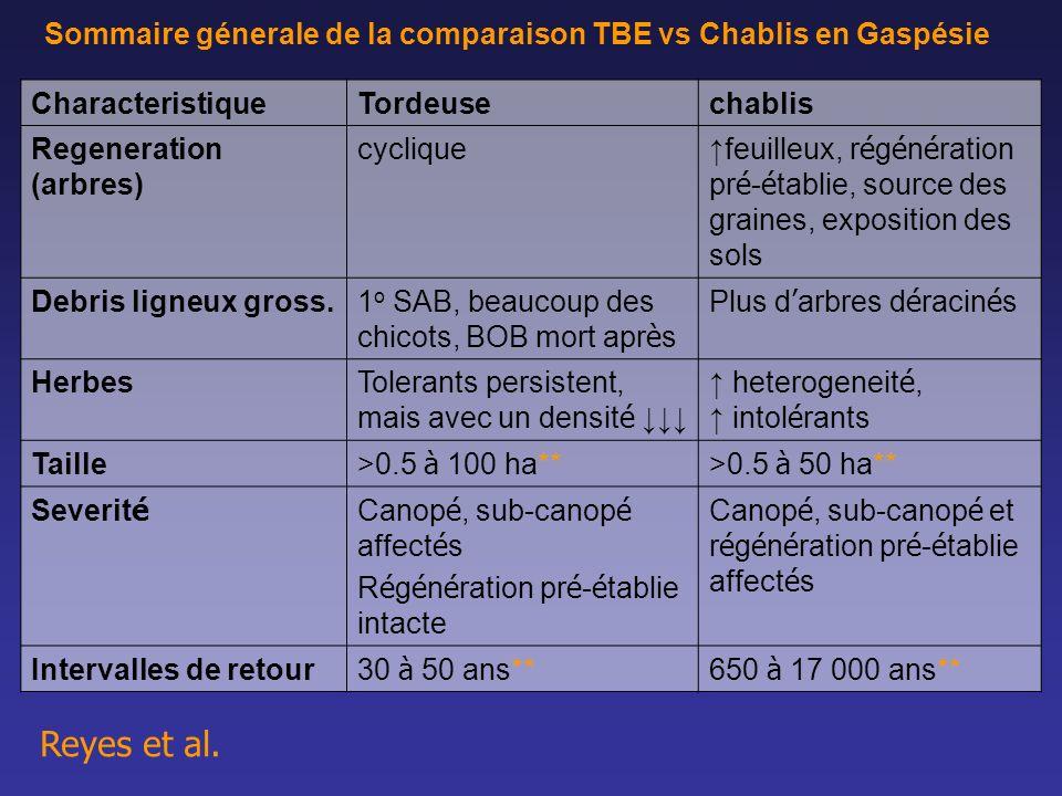 Sommaire génerale de la comparaison TBE vs Chablis en Gaspésie