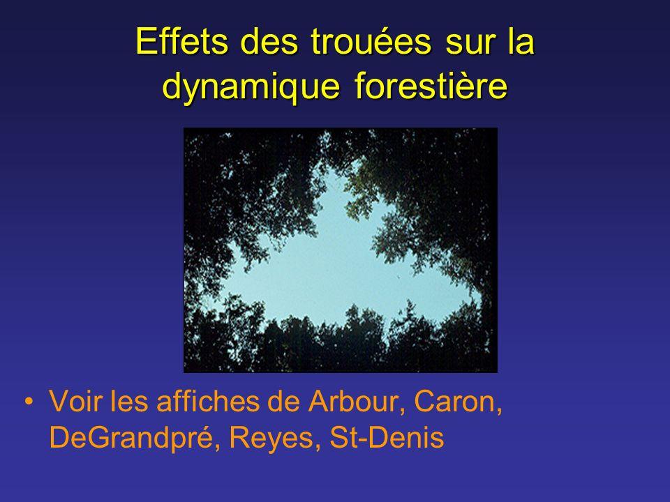 Effets des trouées sur la dynamique forestière