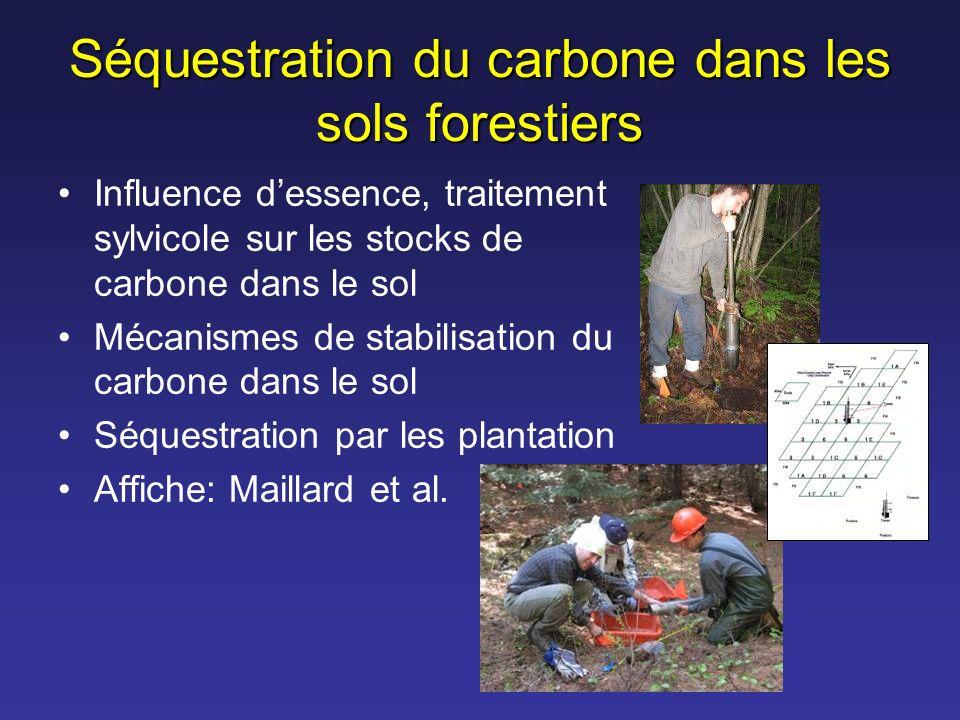 Séquestration du carbone dans les sols forestiers