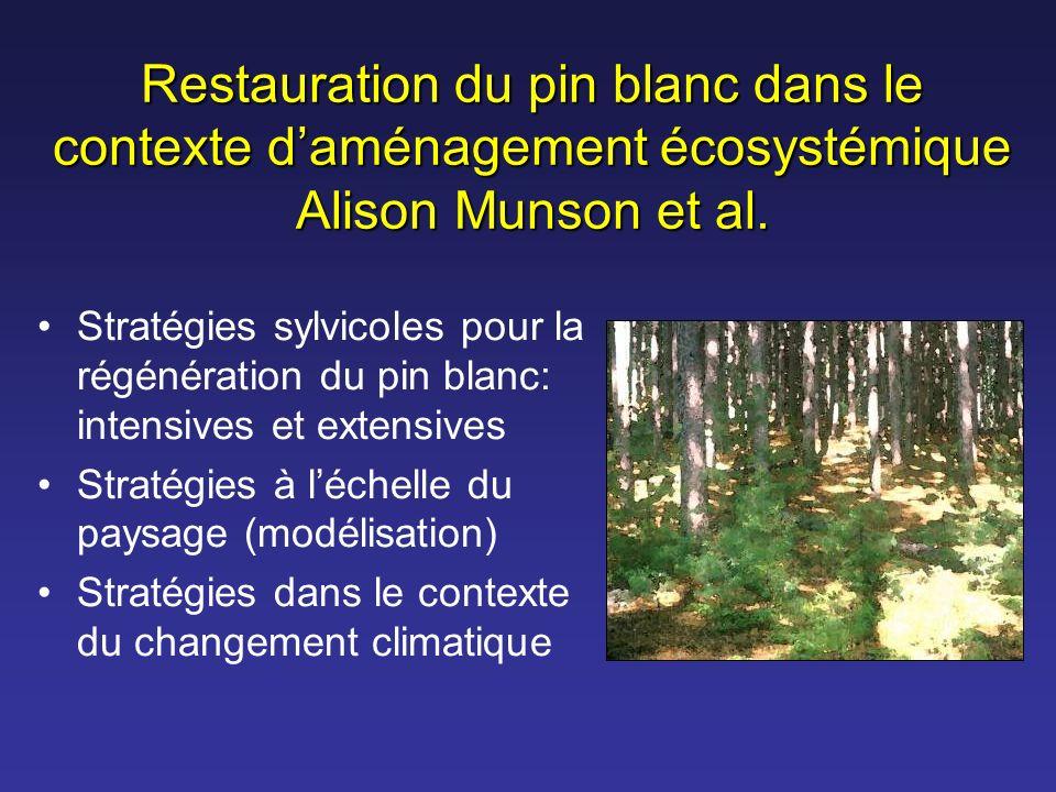Restauration du pin blanc dans le contexte d'aménagement écosystémique Alison Munson et al.