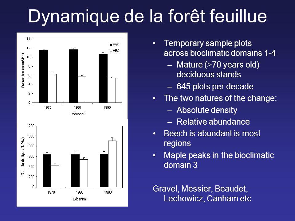Dynamique de la forêt feuillue