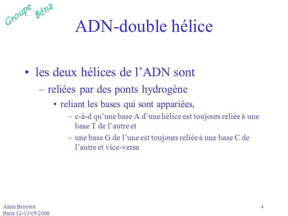 ADN-double hélice les deux hélices de l'ADN sont