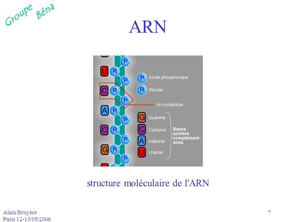 structure moléculaire de l ARN