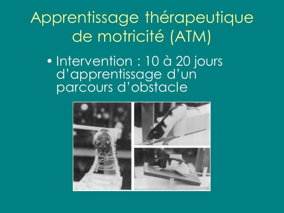Apprentissage thérapeutique de motricité (ATM)