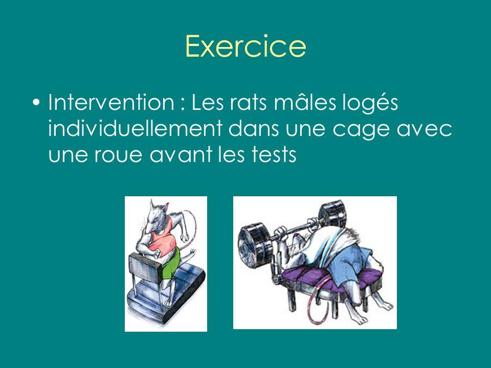 Exercice Intervention : Les rats mâles logés individuellement dans une cage avec une roue avant les tests.