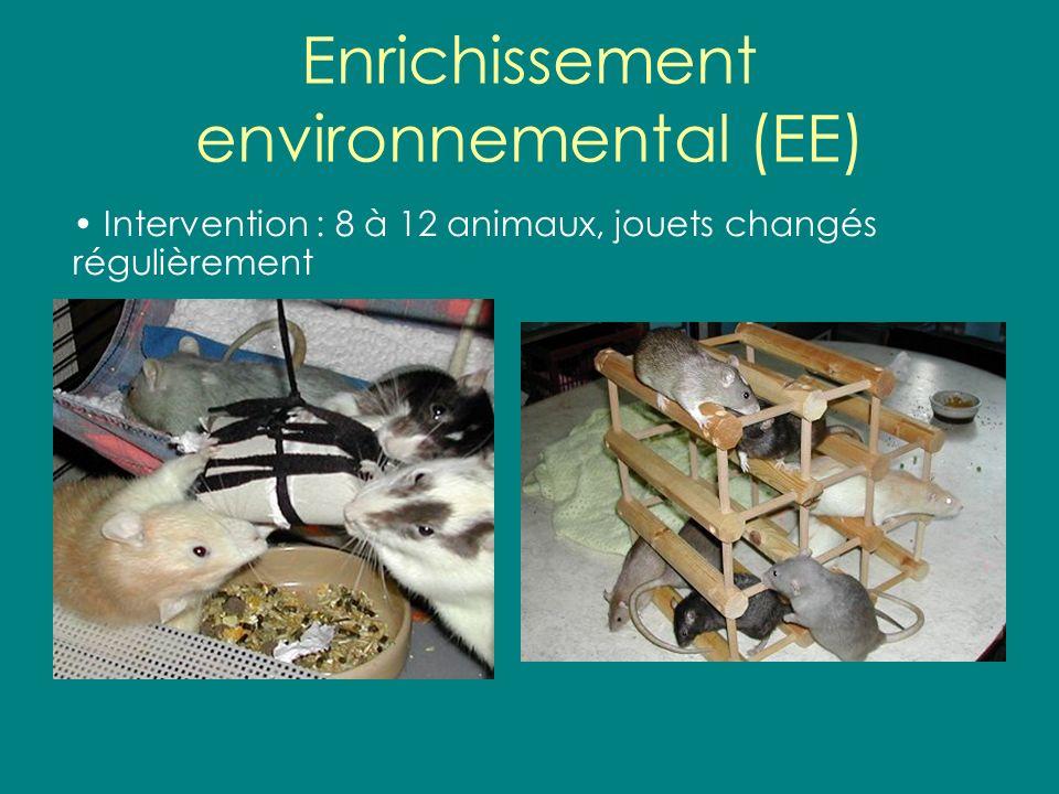 Enrichissement environnemental (EE)