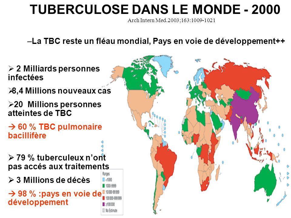 TUBERCULOSE DANS LE MONDE - 2000