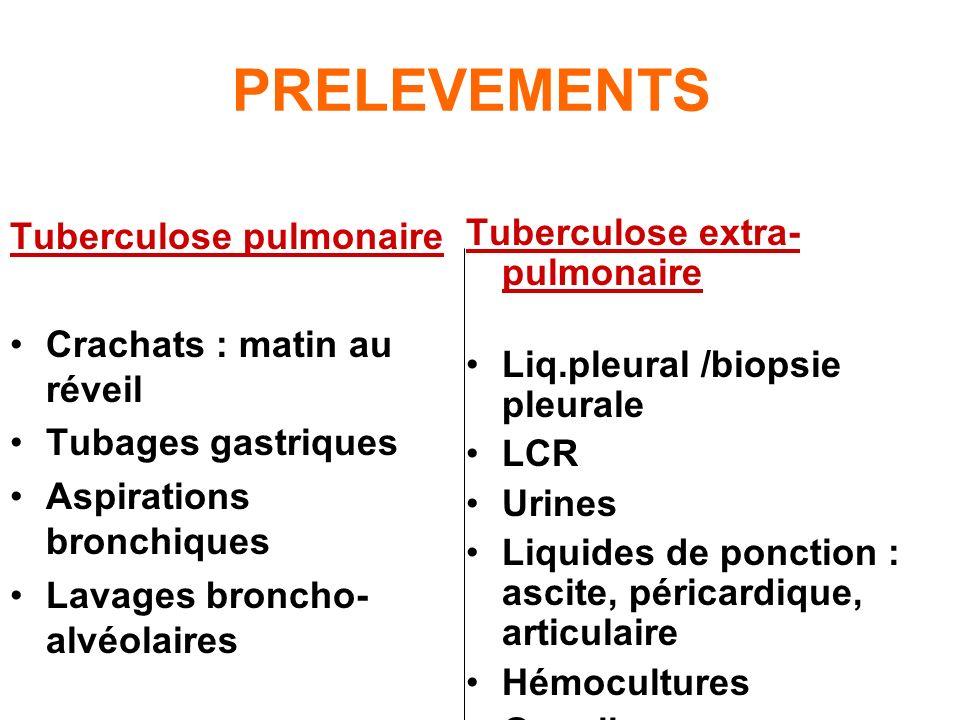 PRELEVEMENTS Tuberculose pulmonaire Crachats : matin au réveil