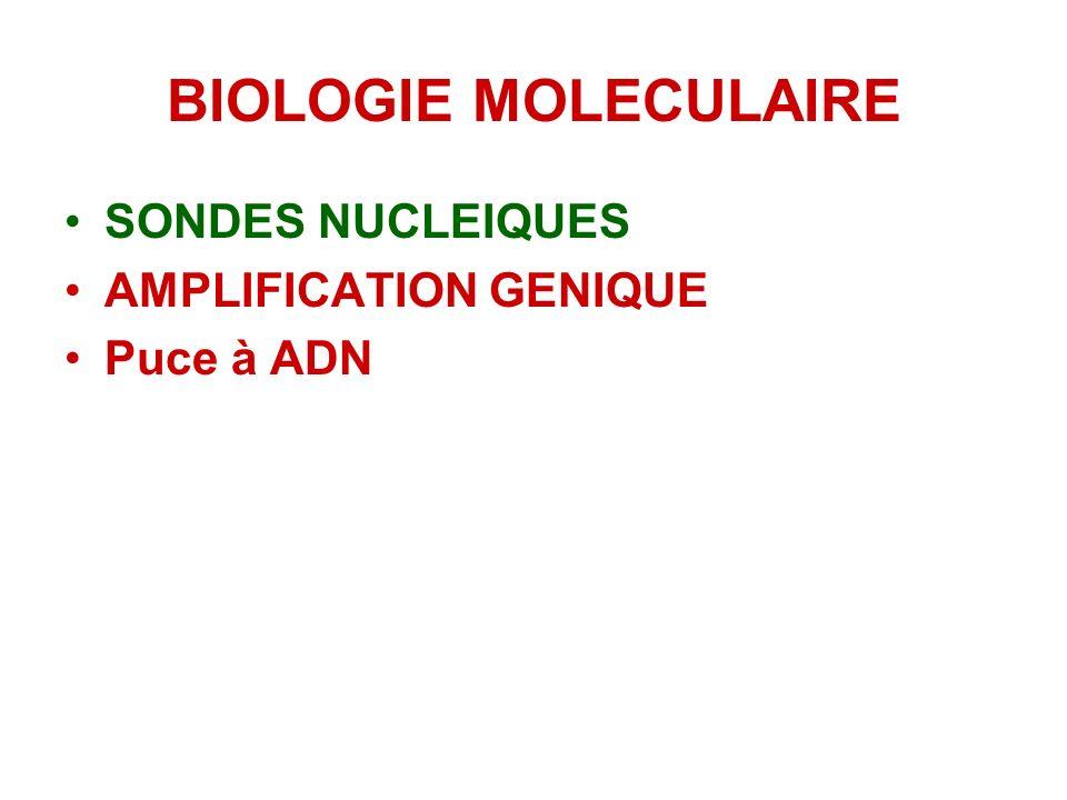 BIOLOGIE MOLECULAIRE SONDES NUCLEIQUES AMPLIFICATION GENIQUE