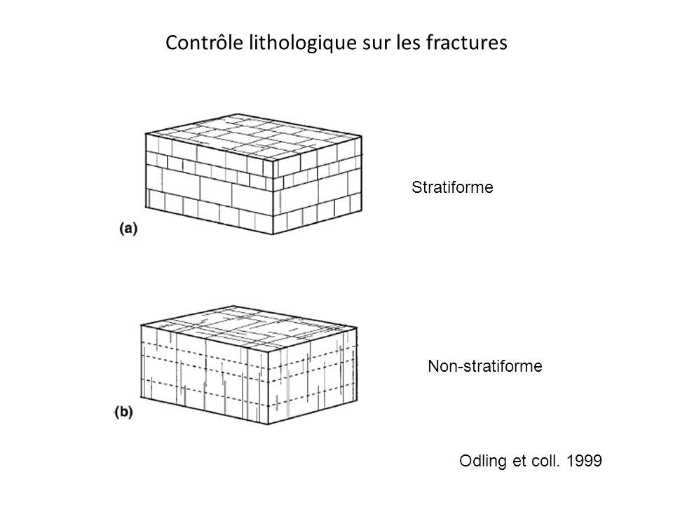 Contrôle lithologique sur les fractures