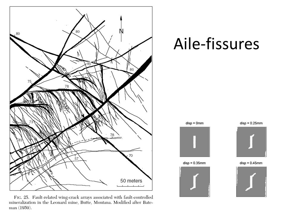 Aile-fissures