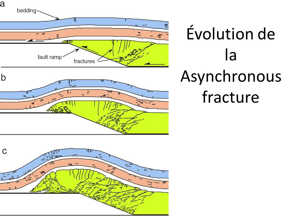 Évolution de la Asynchronousfracture