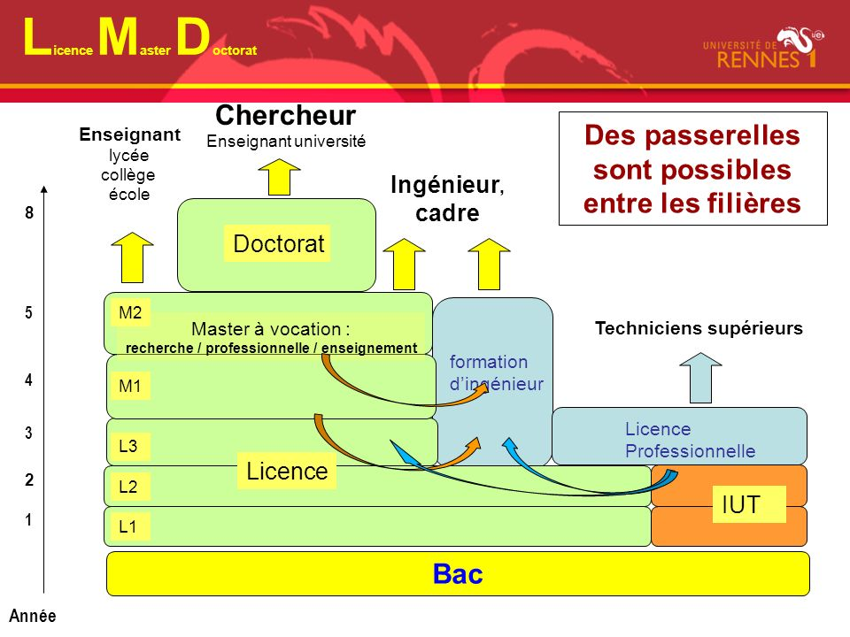 Licence Master Doctorat