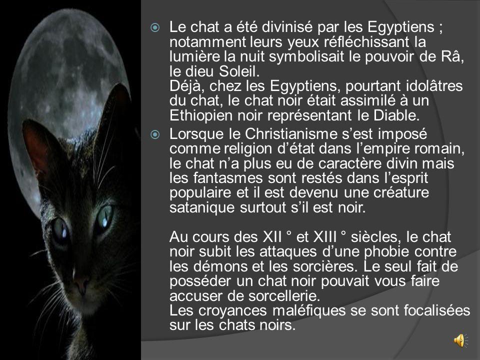 Le chat a été divinisé par les Egyptiens ; notamment leurs yeux réfléchissant la lumière la nuit symbolisait le pouvoir de Râ, le dieu Soleil. Déjà, chez les Egyptiens, pourtant idolâtres du chat, le chat noir était assimilé à un Ethiopien noir représentant le Diable.