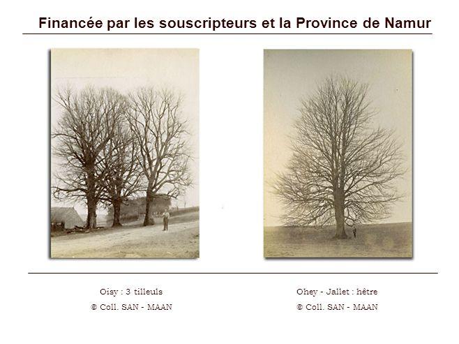 Financée par les souscripteurs et la Province de Namur