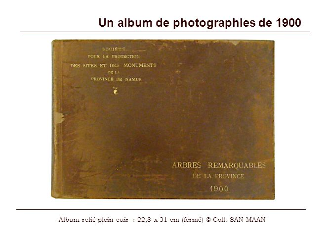 Un album de photographies de 1900