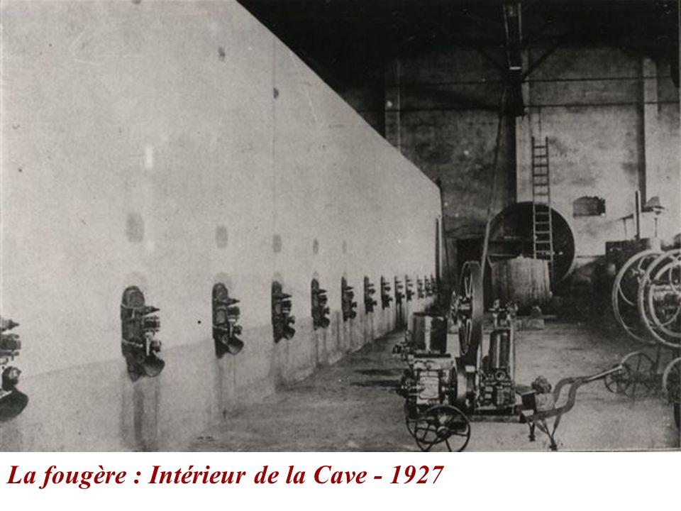 La fougère : Intérieur de la Cave - 1927