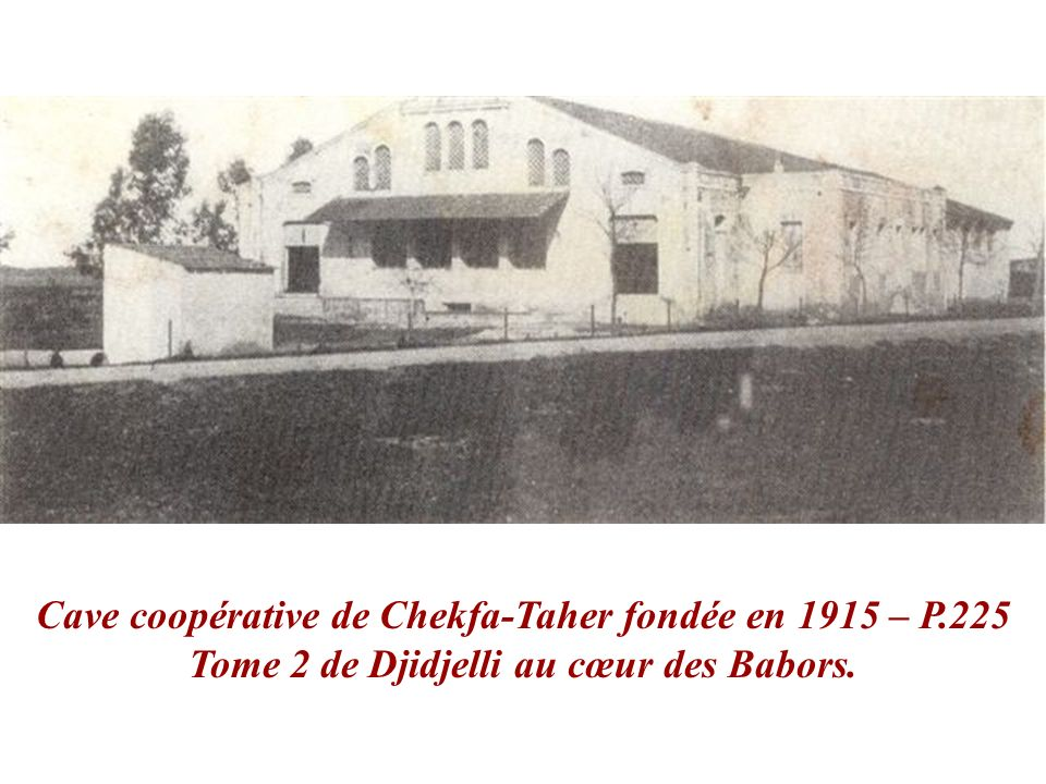 Cave coopérative de Chekfa-Taher fondée en 1915 – P