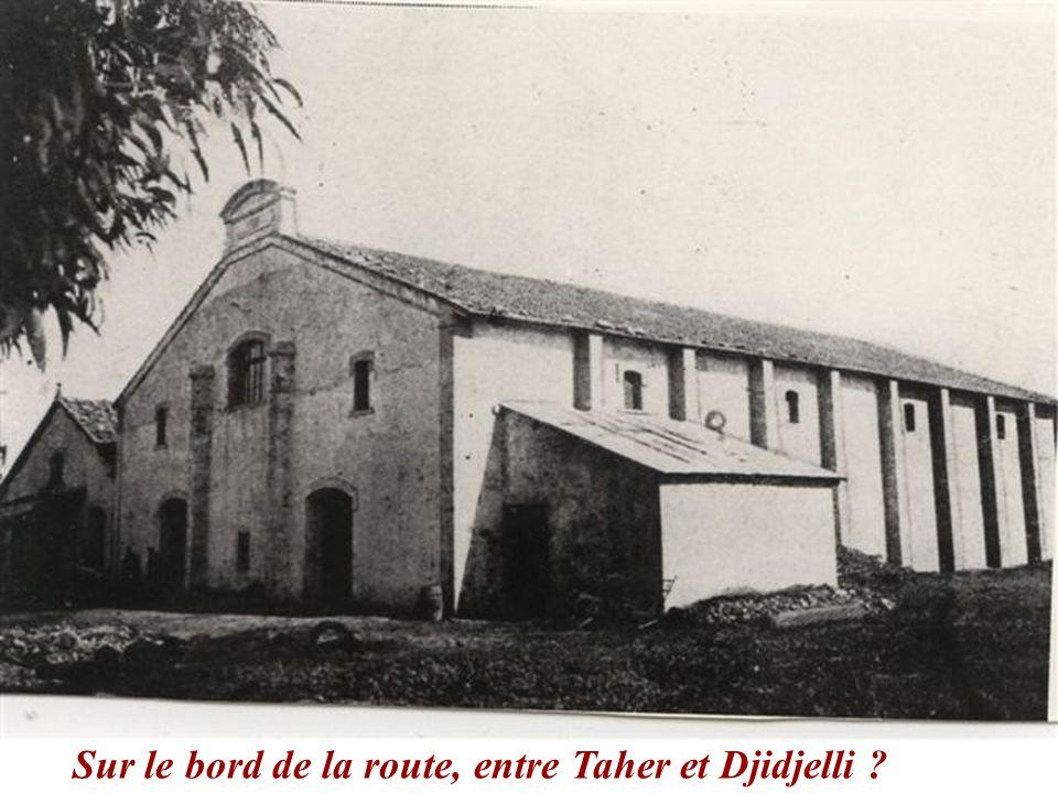 Sur le bord de la route, entre Taher et Djidjelli