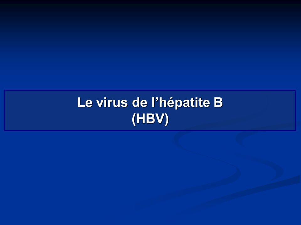 Le virus de l'hépatite B (HBV)