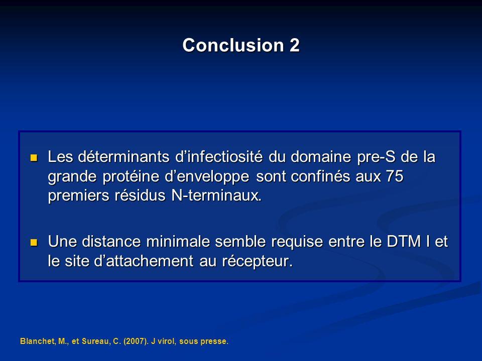 Conclusion 2 Les déterminants d'infectiosité du domaine pre-S de la grande protéine d'enveloppe sont confinés aux 75 premiers résidus N-terminaux.