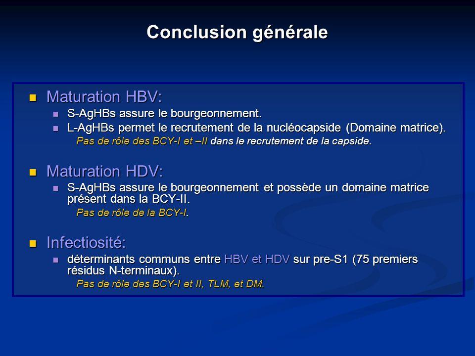 Conclusion générale Maturation HBV: Maturation HDV: Infectiosité: