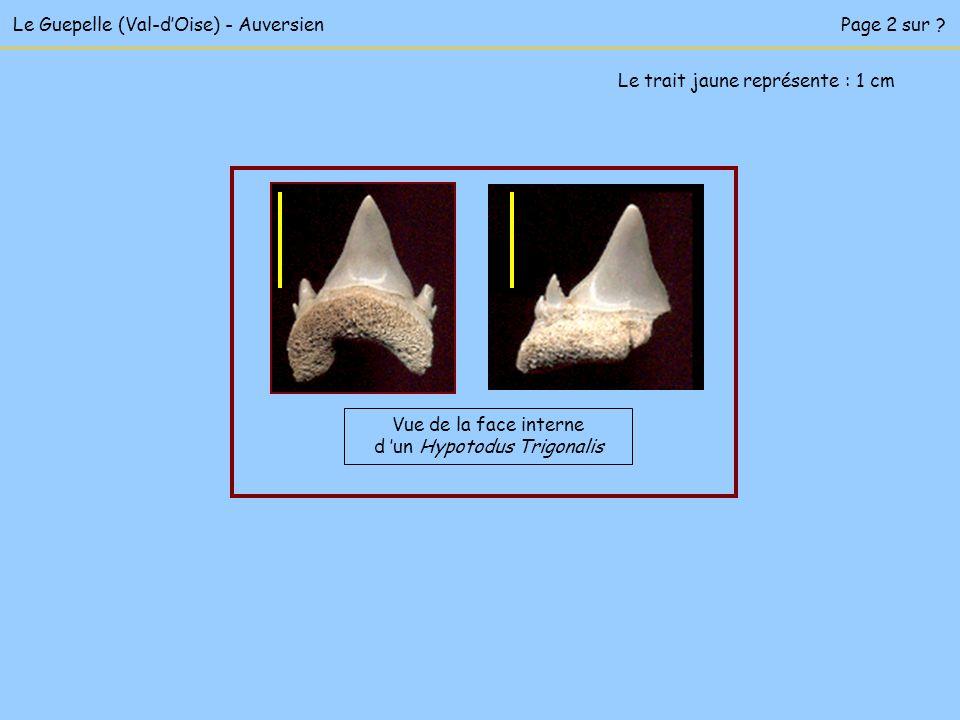 Le Guepelle (Val-d'Oise) - Auversien Page 2 sur