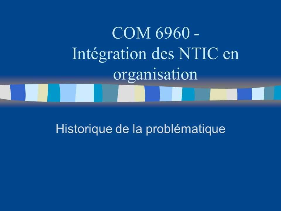 COM 6960 - Intégration des NTIC en organisation