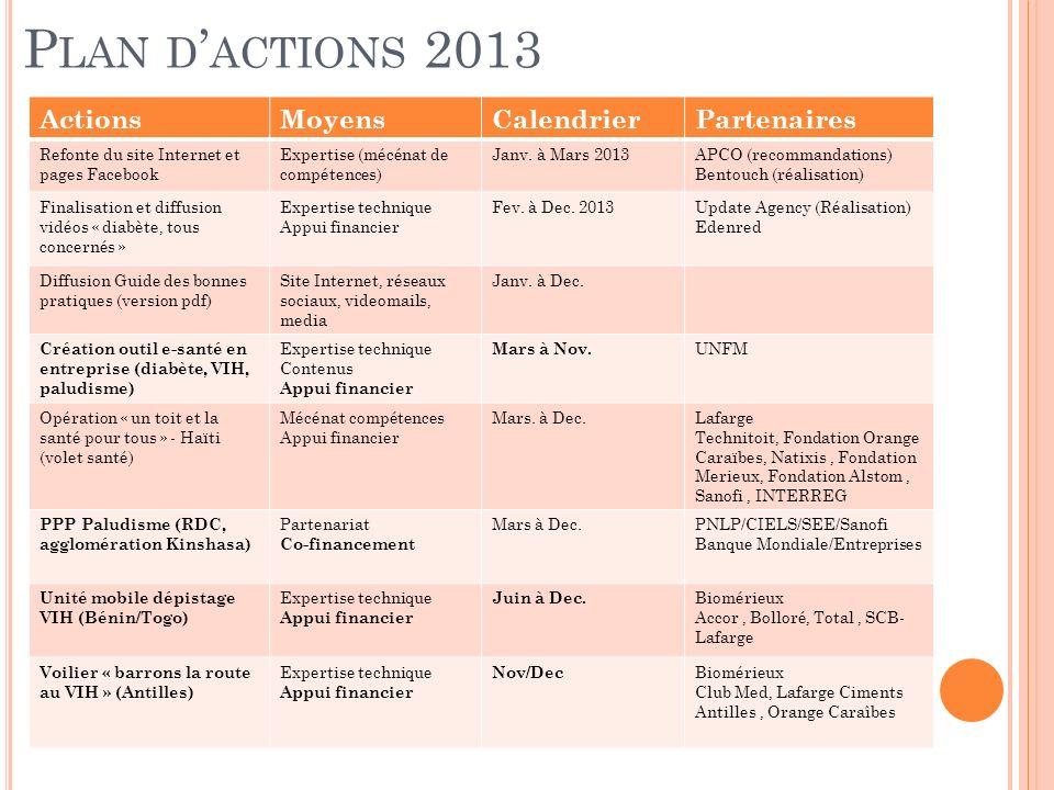 . Plan d'actions 2013 Actions Moyens Calendrier Partenaires