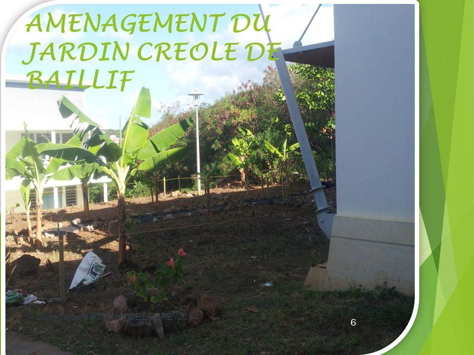 AMENAGEMENT DU JARDIN CREOLE DE BAILLIF