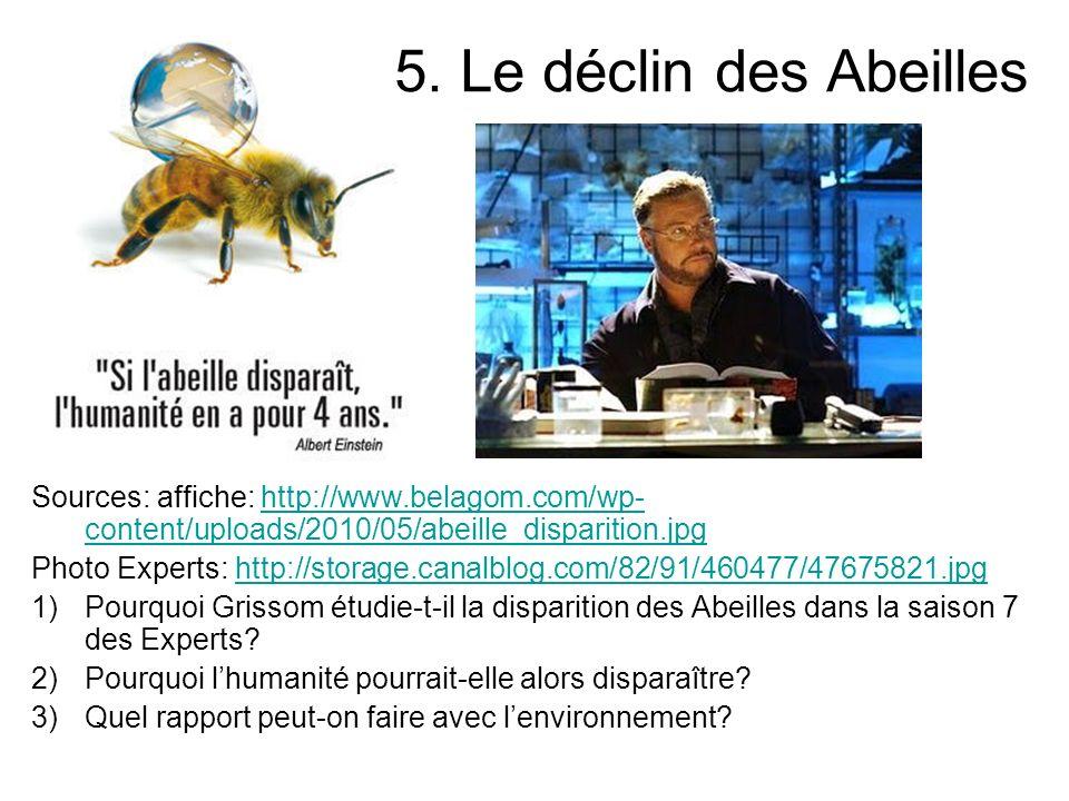 5. Le déclin des Abeilles Sources: affiche: http://www.belagom.com/wp-content/uploads/2010/05/abeille_disparition.jpg.