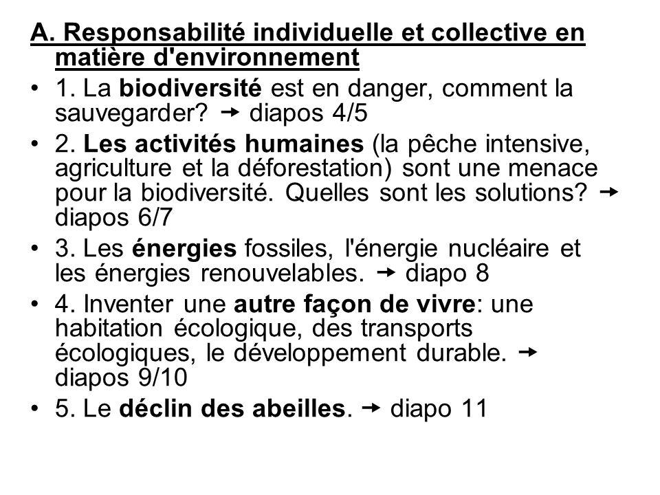 A. Responsabilité individuelle et collective en matière d environnement