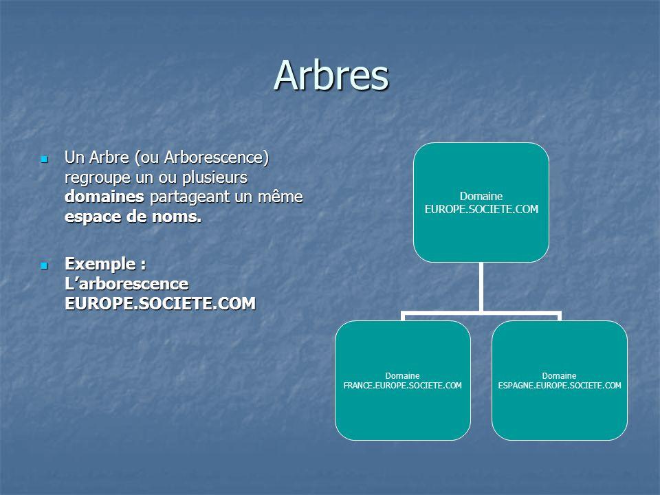 Arbres Un Arbre (ou Arborescence) regroupe un ou plusieurs domaines partageant un même espace de noms.