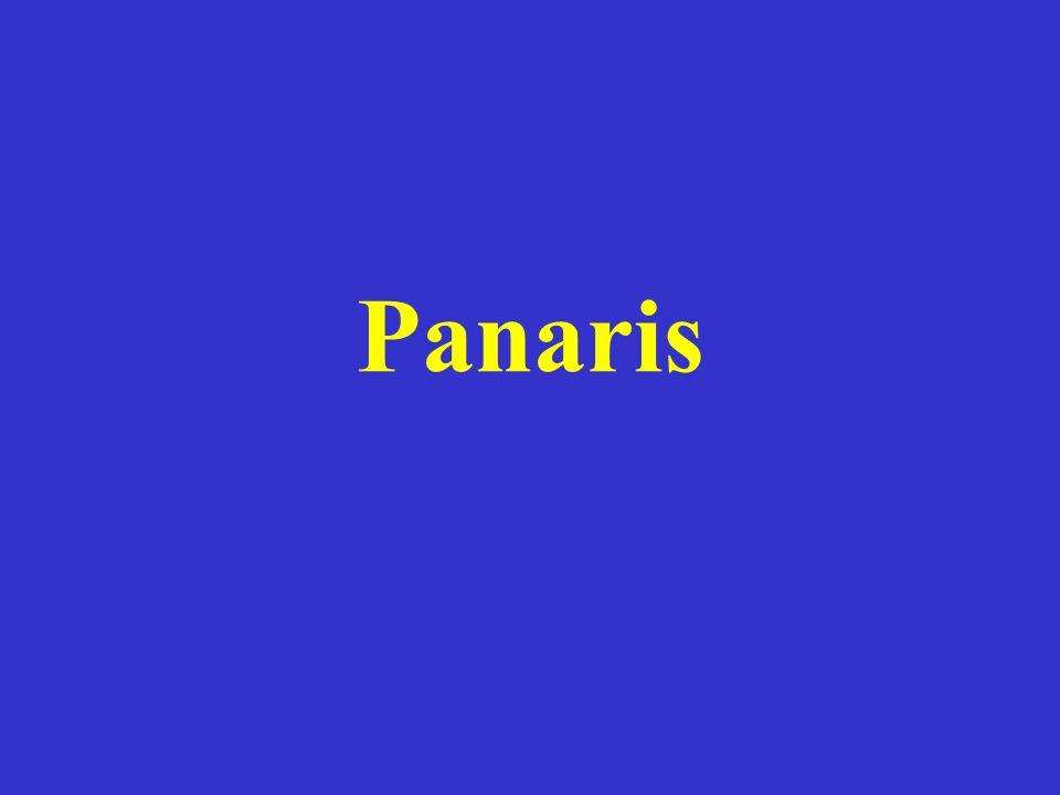 Panaris