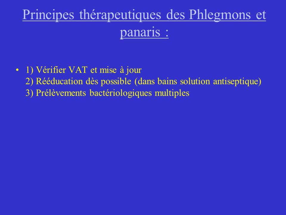 Principes thérapeutiques des Phlegmons et panaris :