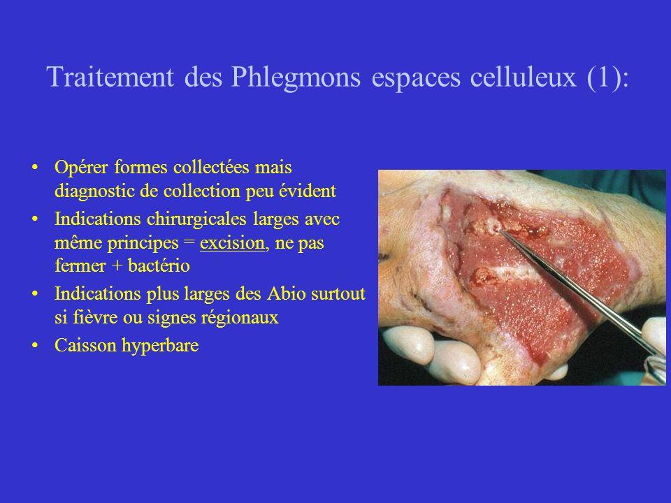 Traitement des Phlegmons espaces celluleux (1):