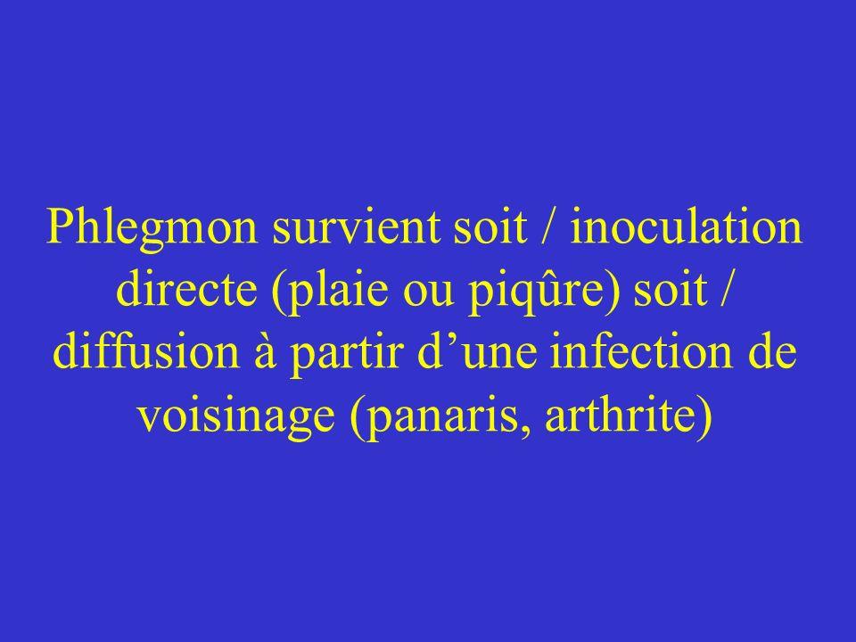 Phlegmon survient soit / inoculation directe (plaie ou piqûre) soit / diffusion à partir d'une infection de voisinage (panaris, arthrite)