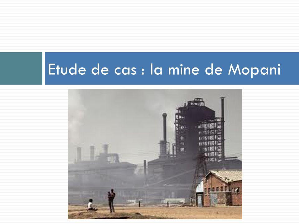 Etude de cas : la mine de Mopani