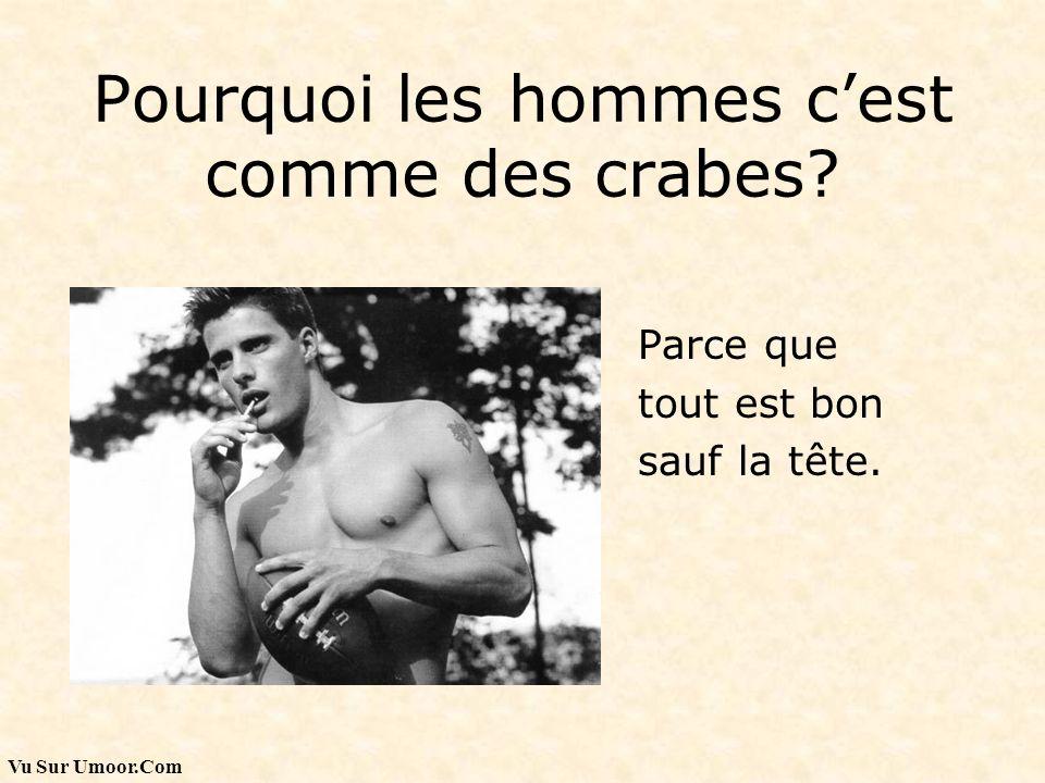 Pourquoi les hommes c'est comme des crabes