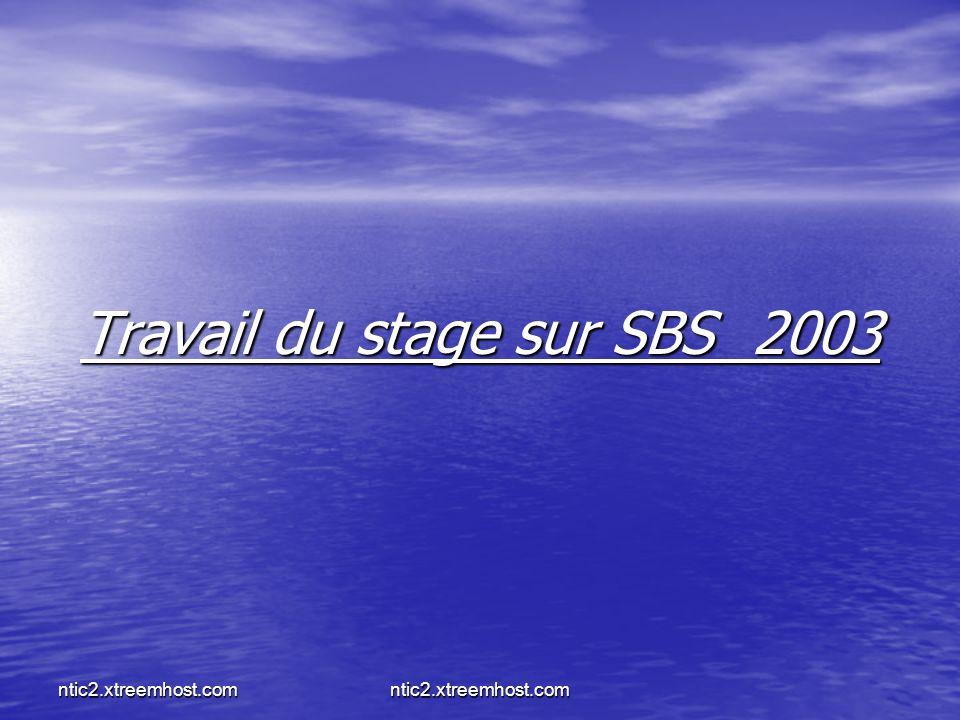 Travail du stage sur SBS 2003
