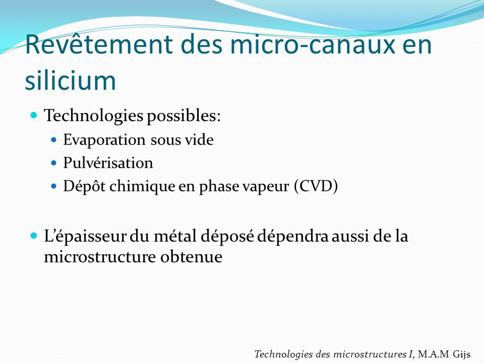 Revêtement des micro-canaux en silicium