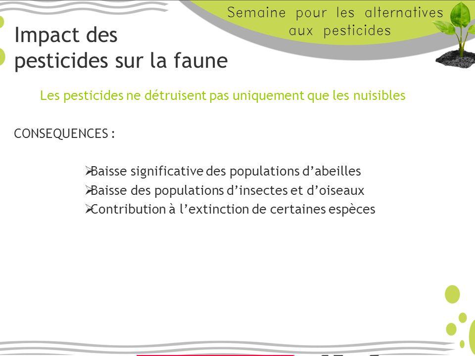 Impact des pesticides sur la faune