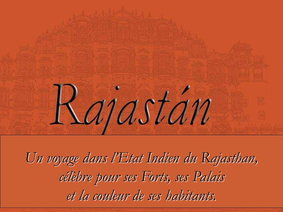Un voyage dans l'Etat Indien du Rajasthan,
