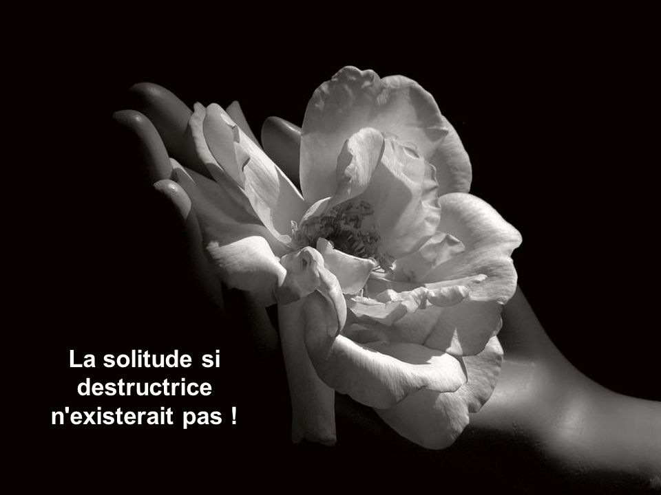 La solitude si destructrice n existerait pas !