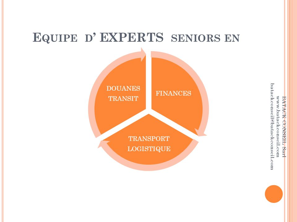 Equipe d' EXPERTS seniors en