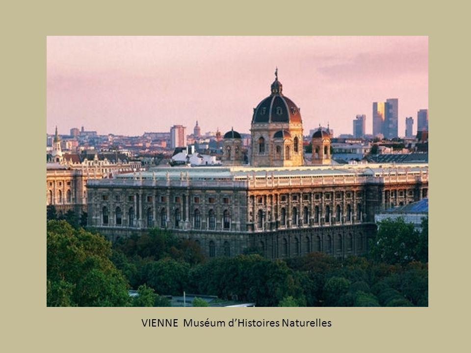 VIENNE Muséum d'Histoires Naturelles