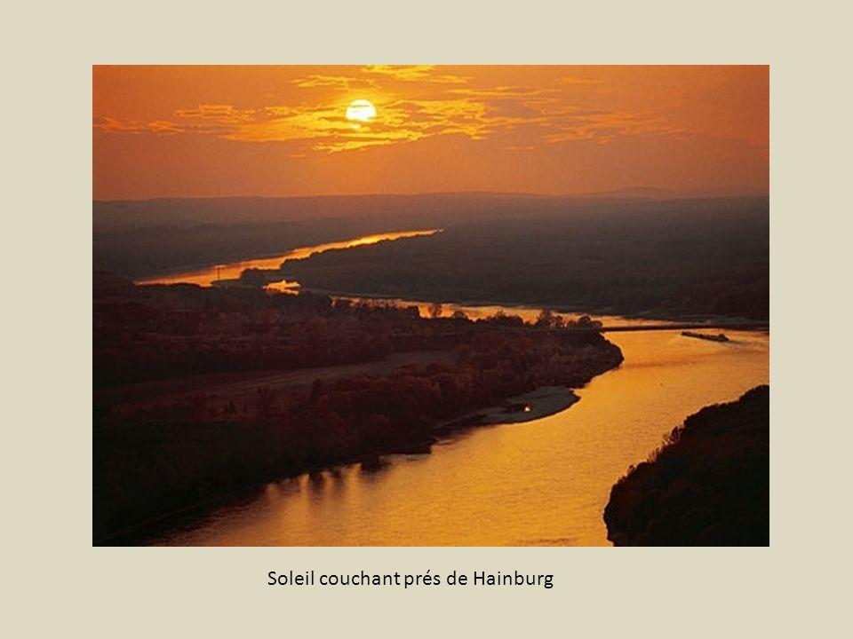 Soleil couchant prés de Hainburg