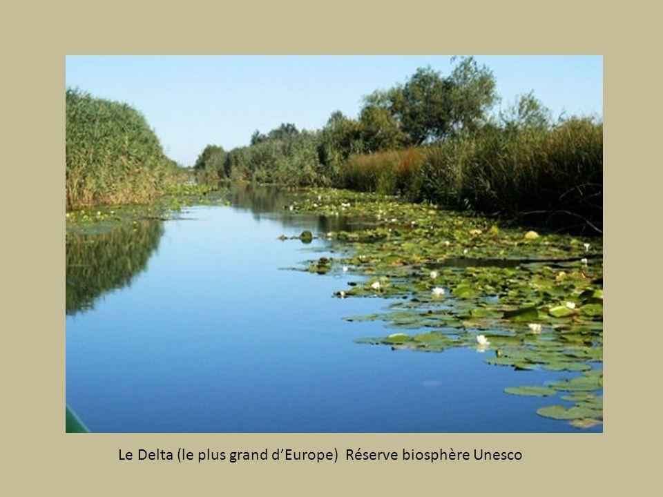 Le Delta (le plus grand d'Europe) Réserve biosphère Unesco