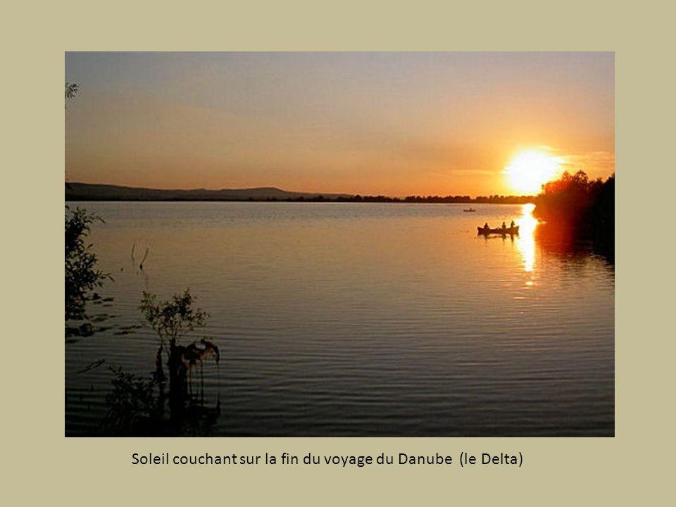Soleil couchant sur la fin du voyage du Danube (le Delta)
