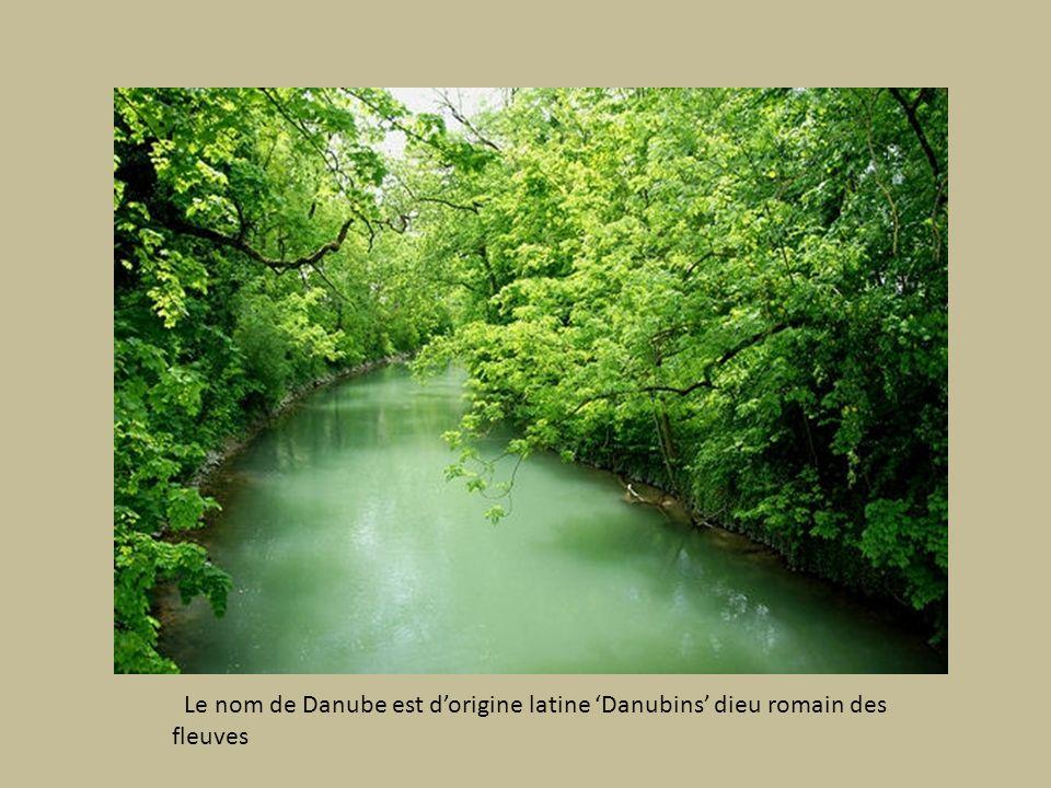Le nom de Danube est d'origine latine 'Danubins' dieu romain des fleuves